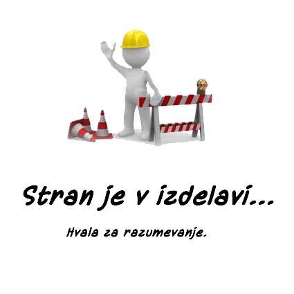 stran_je_v_izdelavi