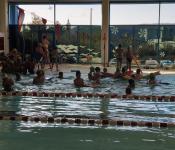 plavalni-tec48daj-4